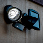 Solar Two Directional Security Flood Light